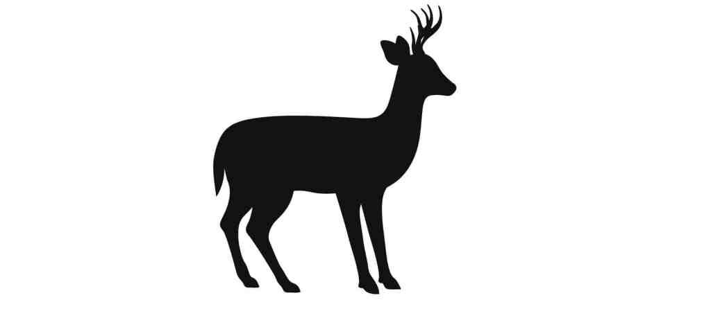 Chevreuil signe du zodiaque maya